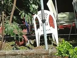 watch hot nextdoor sunbathing